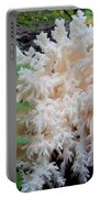 Mushroom Hericium Coralloid Portable Battery Charger