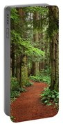 Heritage Forest 2 Portable Battery Charger