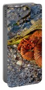 Hermit Crab- Florida Portable Battery Charger
