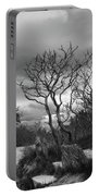 Hermit Island Tree 0912 Portable Battery Charger