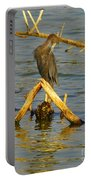 Heron And Turtle Portable Battery Charger