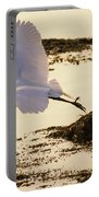 Heron Fly-by Portable Battery Charger