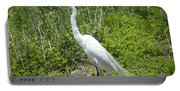Heron Watching Portable Battery Charger