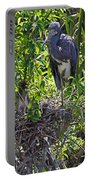 Heron With Chick In Nest Portable Battery Charger