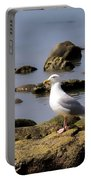 Herring Gull At Charmouth Portable Battery Charger