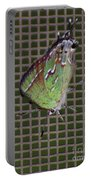 Hessel's Hairstreak Butterfly Portable Battery Charger
