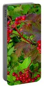 Hi Bush Cranberry Close Up Portable Battery Charger