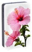 Hibiscus 7 V2 Portable Battery Charger