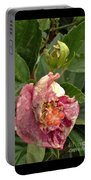 Hibiscus Bloom Closed In The Rain   End View      May           Indiana      Portable Battery Charger