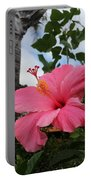 Hibiscus S D Z 1 Portable Battery Charger