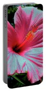 Hibiscus With A Solarize Effect Portable Battery Charger