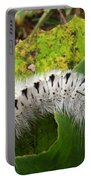 Hickory Tussock Portable Battery Charger