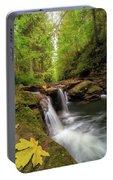 Hidden Falls At Rock Creek Portable Battery Charger