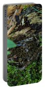 Hidden Frog Portable Battery Charger