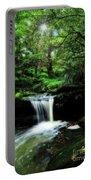 Hidden Rainforest - Painterly Portable Battery Charger
