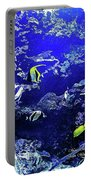 Hiding Fish Portable Battery Charger