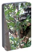 Hiding In A Tree Portable Battery Charger