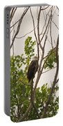 Hiding In Plain Sight Portable Battery Charger