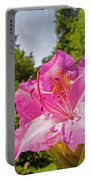 Highland Park Garden Rochester Ny Purple Flower Portable Battery Charger