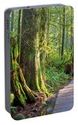 Hiking Trail Through Forest In Lynn Canyon Park Portable Battery Charger