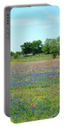 Hill Country Pastel Panorama Portable Battery Charger