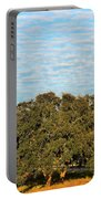 Hill Country Tree  Portable Battery Charger