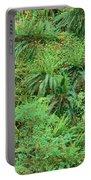 Hillside Ferns Portable Battery Charger