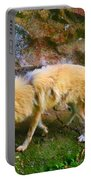 Himalayan Wolf Portable Battery Charger