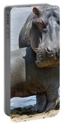Hippo Portable Battery Charger