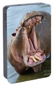 Hippo's Open Mouth Portable Battery Charger