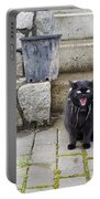 Hissing Cat Portable Battery Charger