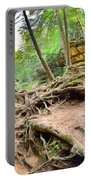 Hocking Hills Ohio Old Man's Gorge Trail Portable Battery Charger