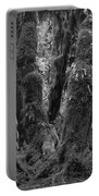 Hoh Rain Forest 3406 Portable Battery Charger