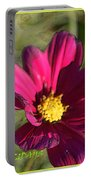 Holiday Art Portable Battery Charger