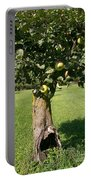 Hollow Apple Tree Portable Battery Charger