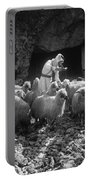 Holy Land: Shepherd, C1910 Portable Battery Charger