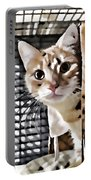 Homeless Cat Portable Battery Charger