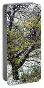 Honey Locust Tree On A Spring Snow Day Portable Battery Charger