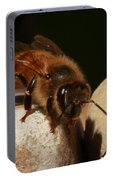 Honeybee Portable Battery Charger