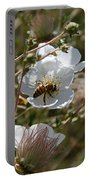 Honeybee Gathering From A White Flower Portable Battery Charger