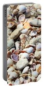 Honeymoon Island Shells Portable Battery Charger