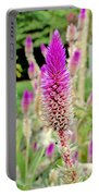 Honolulu Zoo Spires Portable Battery Charger