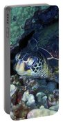 Honu, Green Sea Turtle 2 Portable Battery Charger