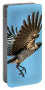 Hooded Crow In Flight Portable Battery Charger
