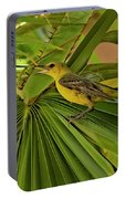 Hooded Oriole H01 Portable Battery Charger