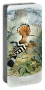 Hoopoe Portable Battery Charger by Edouard Travies