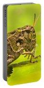 Hopper Facial Portable Battery Charger