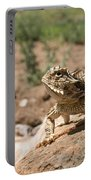 Horned Lizard Portable Battery Charger