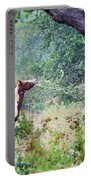 Horse 018 Portable Battery Charger