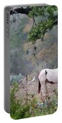 Horse 019 Portable Battery Charger